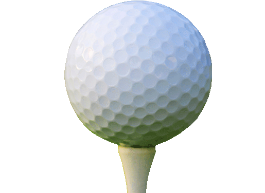 BUNGS Golf Ball